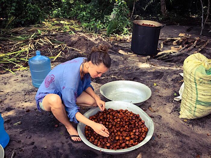 Preparation of Andiroba oil in the village of São Domingo