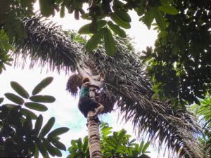 2020_01_Amazonia_Apororoka1-39