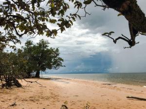 2020_01_Amazonia_Apororoka1-88